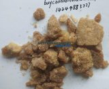 buy bmdp for sale