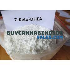 Buy 7-keto DHEA Online